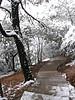 2006.2.18杭州雪 008