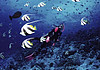 桂林洋海滨旅游区3
