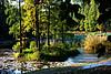 武汉植物园的秋天