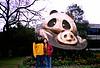 老公和我在成都大熊猫繁殖基地