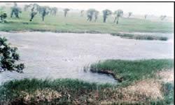 大麦科湿地自然保护区