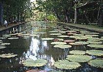 庞普勒穆斯植物园