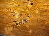 野三坡-鱼谷洞.石花