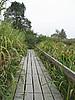 西溪湿地1