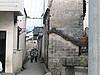 徽杭古道鄣山大峡谷照片 009
