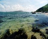 青洲海岛水